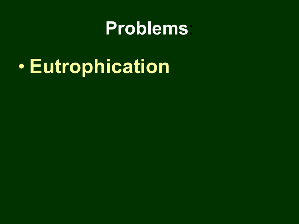 Problems: Eutrophication
