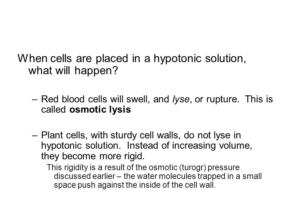 The Following Image Res Shape Of A Red Blood Cell When It Is Placed In Isotonic Hypotonic And Hypertonic Solution