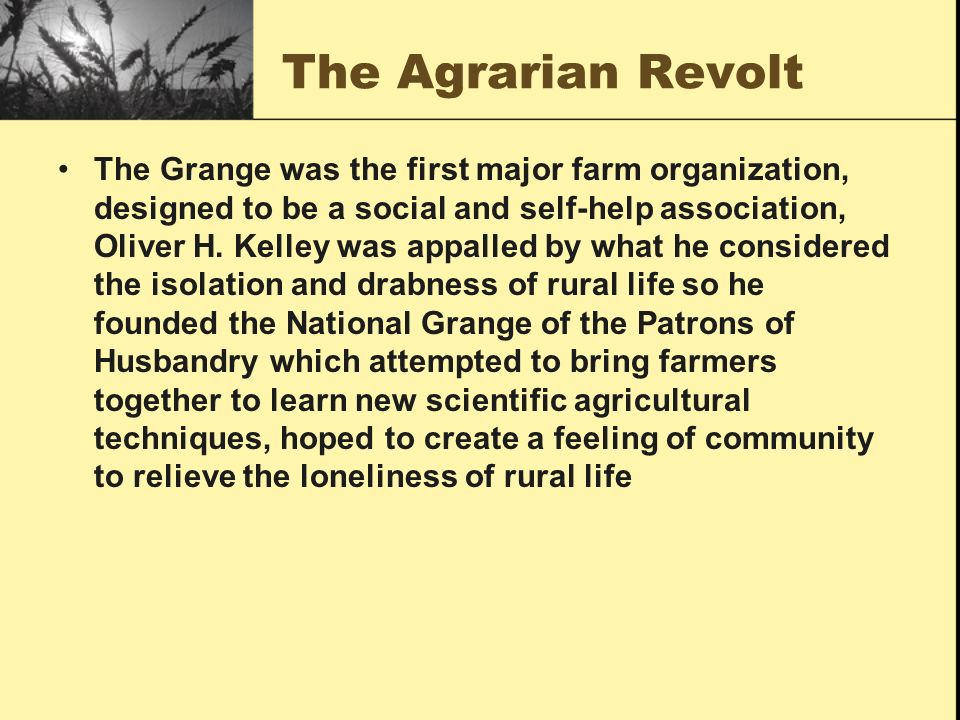 Chapter 19 gilded age politics ppt video online download - National grange of the patrons of husbandry ...