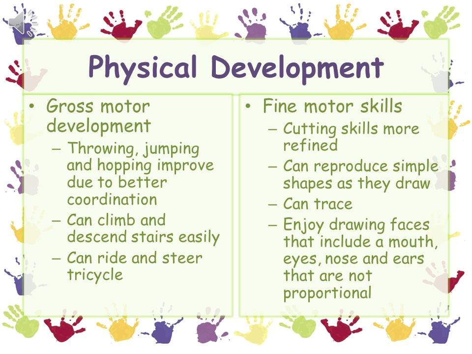 Fine Motor Skills Physical Development