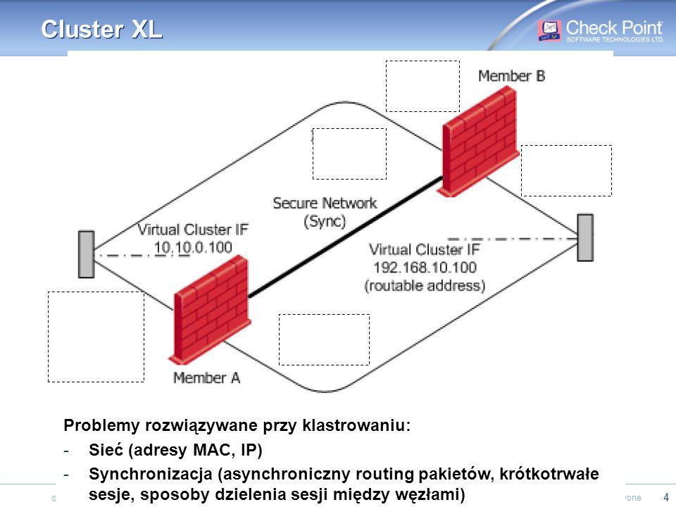Cluster XL Problemy rozwiązywane przy klastrowaniu: