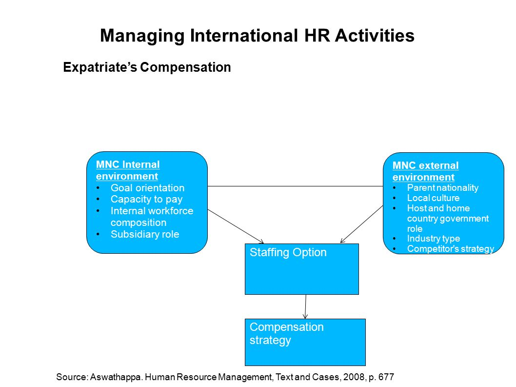 Multinational Companies Staffing Approaches Case Solution & Answer