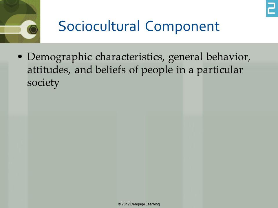 Sociocultural Component