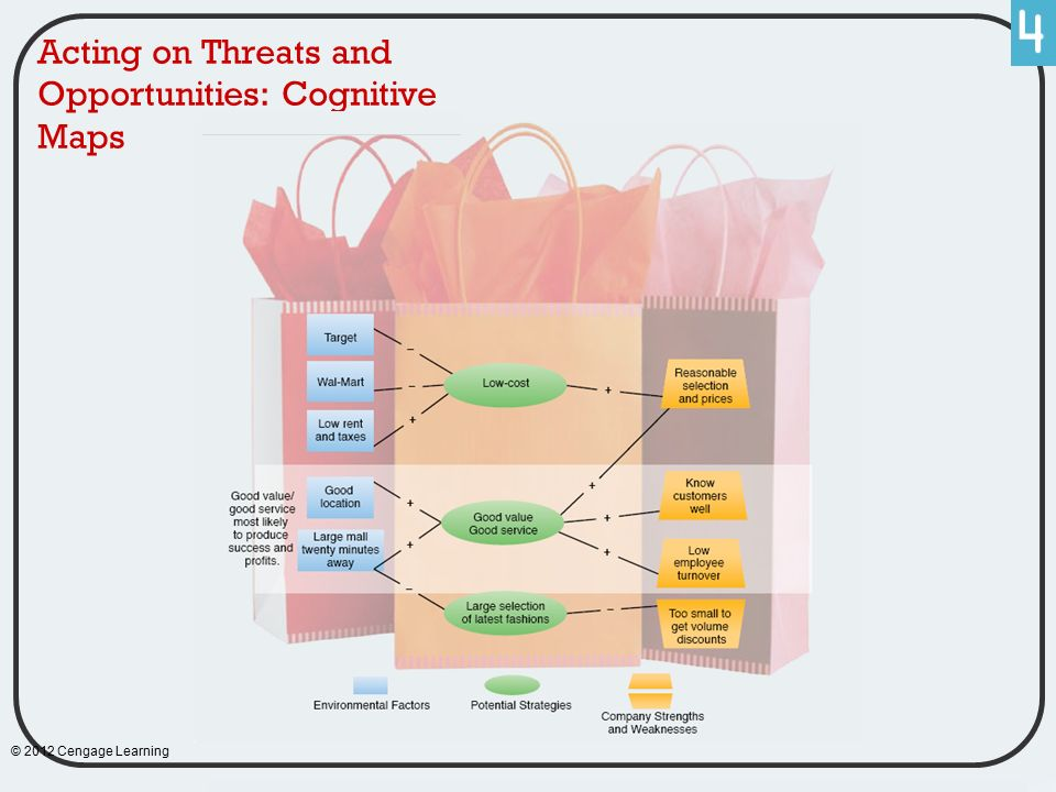 Acting on Threats and Opportunities: Cognitive Maps