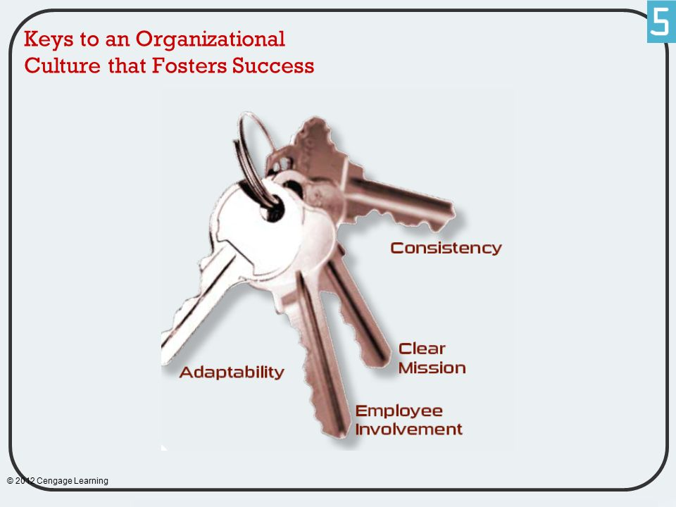 Keys to an Organizational Culture that Fosters Success