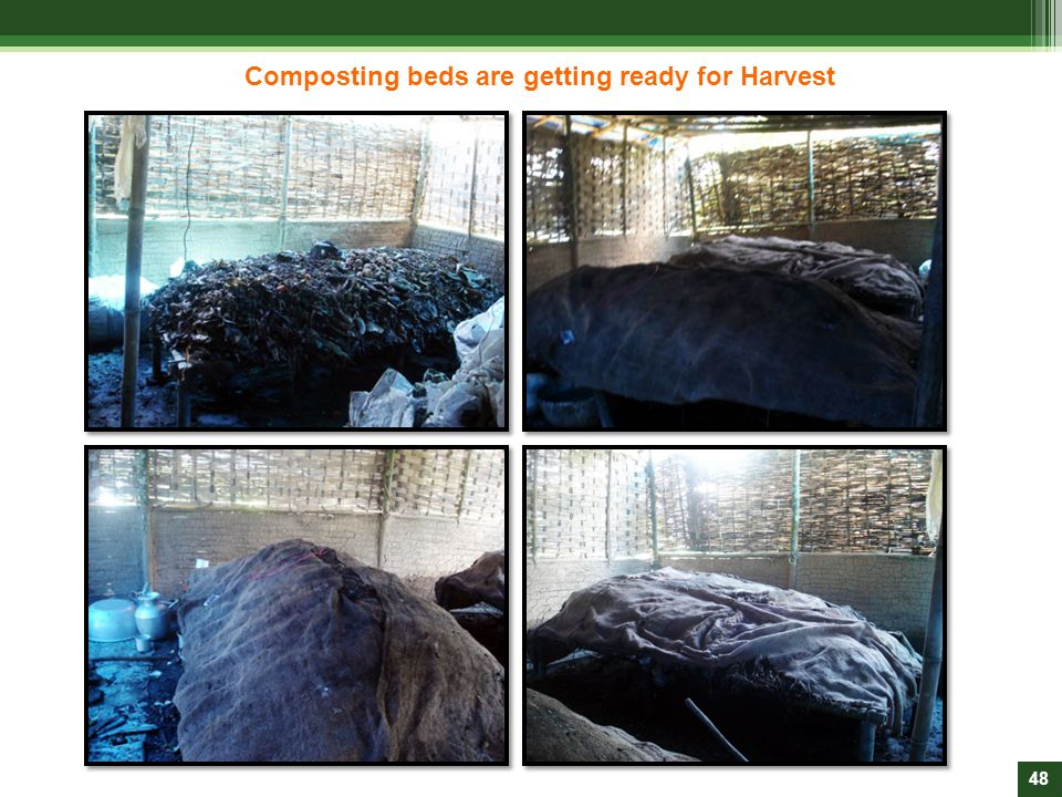 Composting beds are getting ready for Harvest
