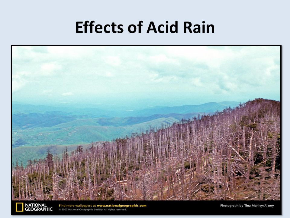Human Impact on the Biosphere - ppt video online download