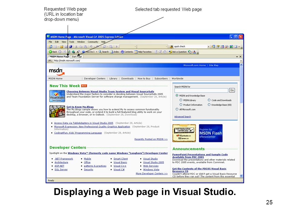 Displaying a Web page in Visual Studio.