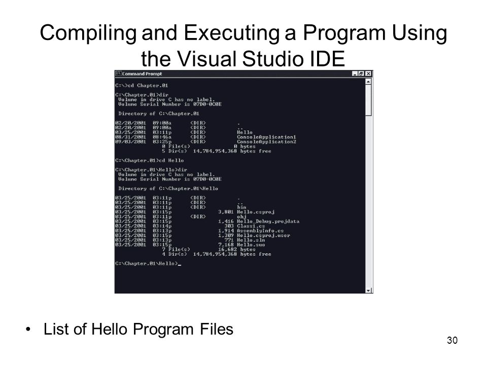 Compiling and Executing a Program Using the Visual Studio IDE
