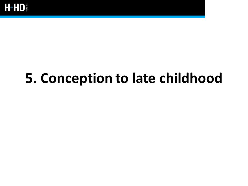 5. Conception to late childhood