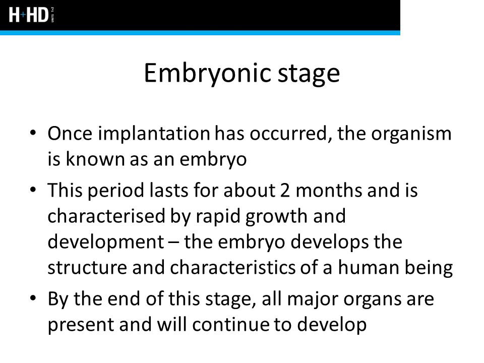 Embryonic stage Once implantation has occurred, the organism is known as an embryo.