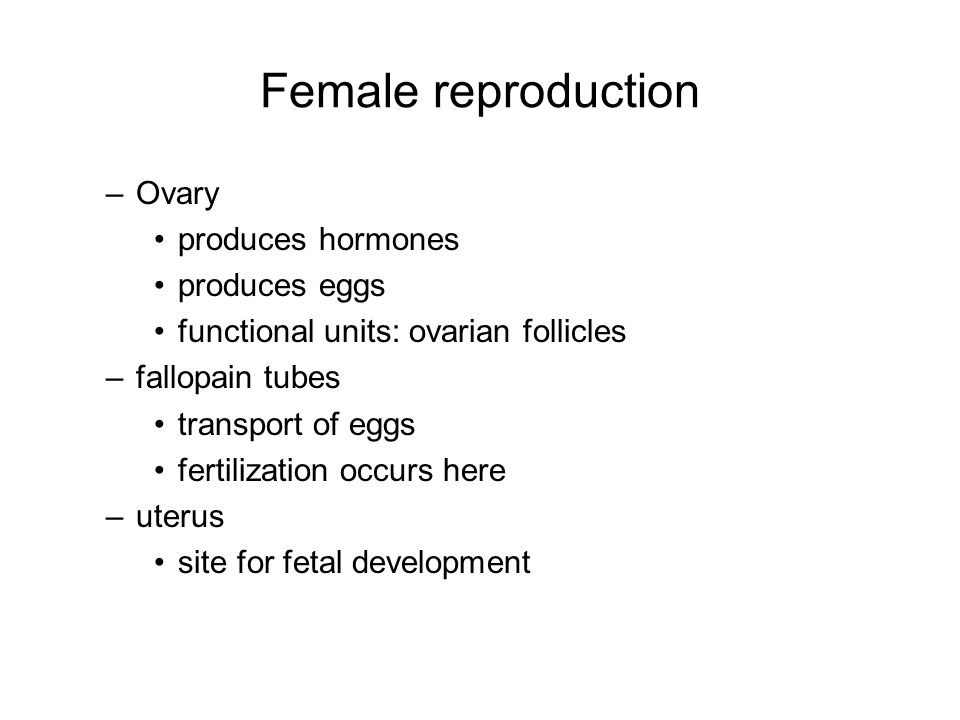 eggs sperm and hormones Most of semen is not sperm, and egg count starts decreasing soon after   ovarian follicular development is initiated during the hormone-free.
