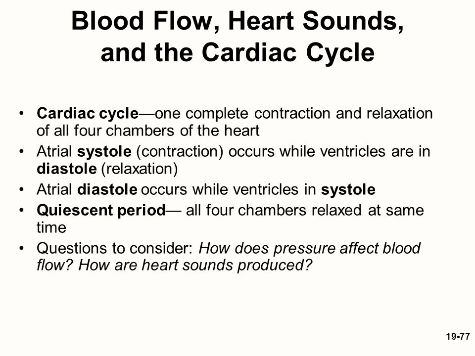 cardiovascular sounds and blood pressure essay The tools you need to write a quality essay or term paper saved essays you have not saved any essays  as simple as it the cardiovascular system sounds it must adjust its output according to the state of the person  excessive alcohol use can cause diseases related to cardiovascular  high blood pressure means that the heart is.
