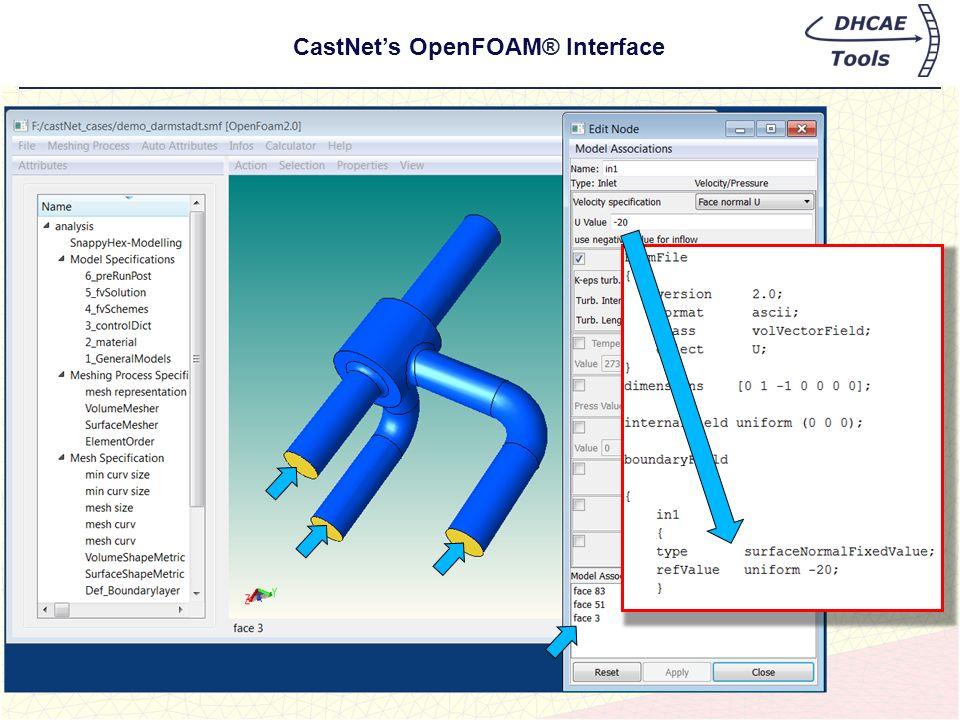 CastNet's OpenFOAM® Interface