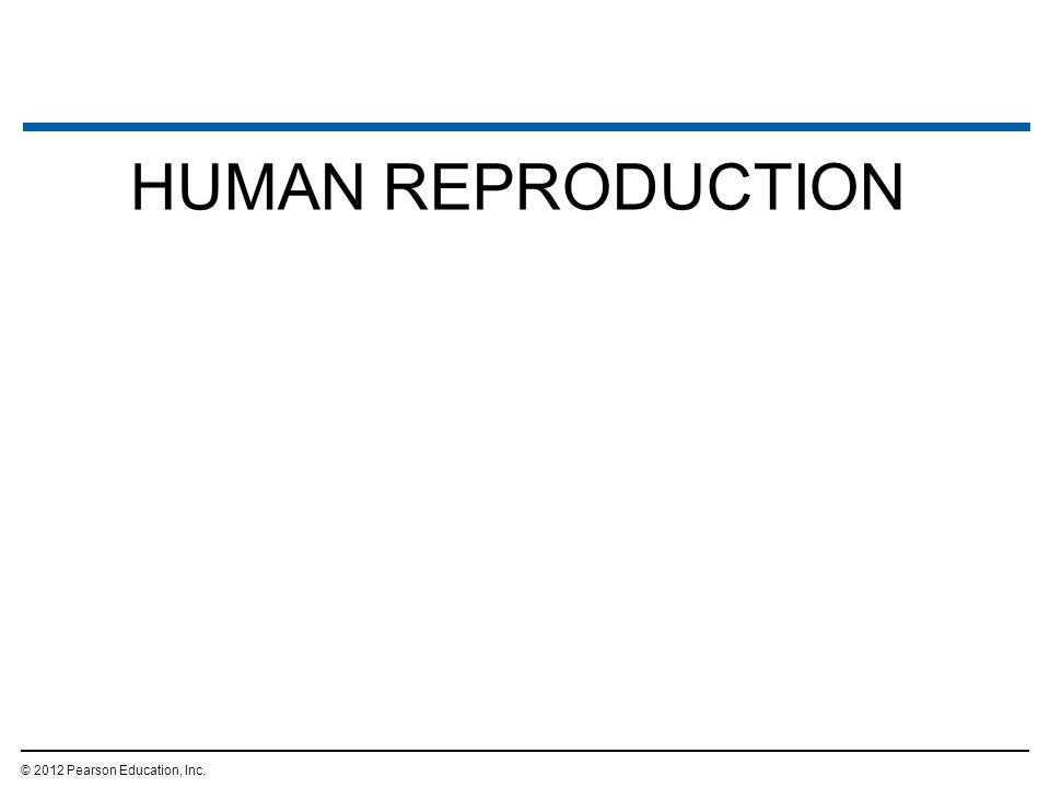 human reproduction and development pdf