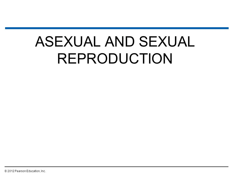 teaching sexual and asexual reproduction discovers she