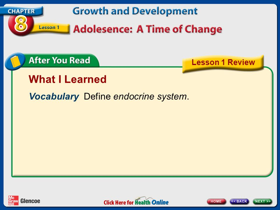What I Learned Vocabulary Define endocrine system. Lesson 1 Review