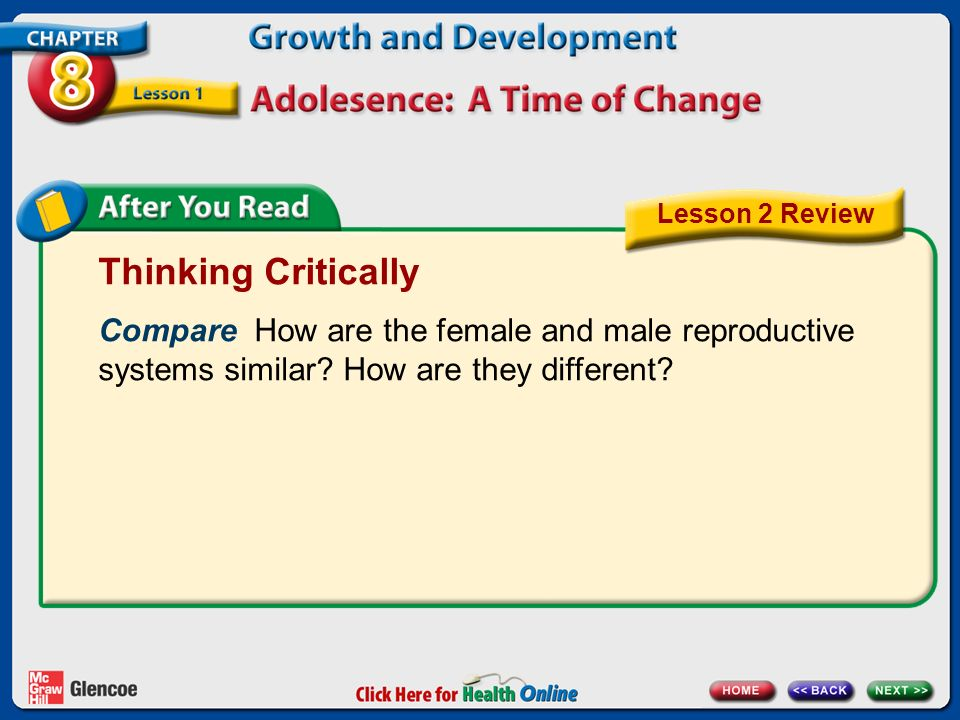 Lesson 2 Review Thinking Critically. Compare How are the female and male reproductive systems similar How are they different