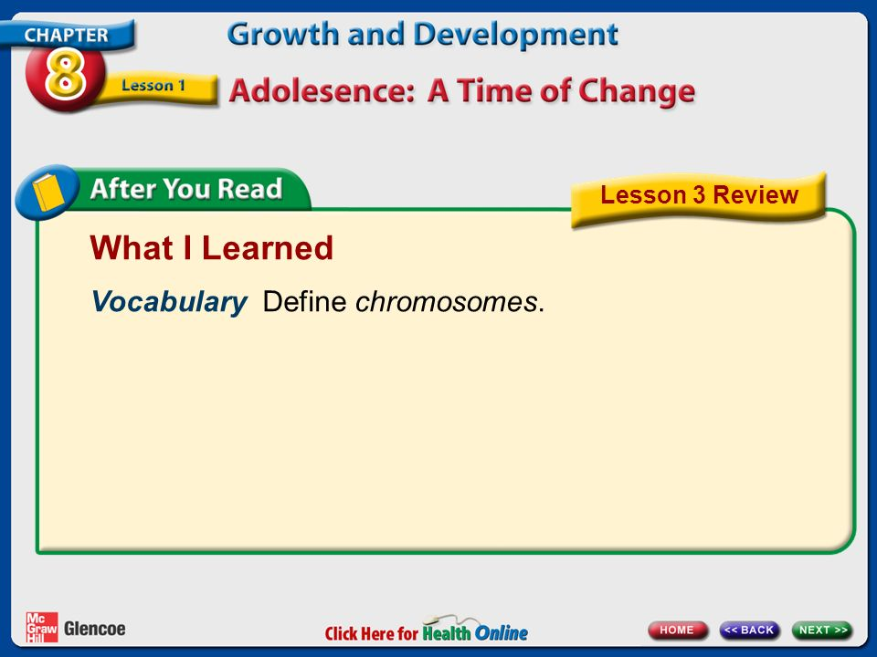 What I Learned Vocabulary Define chromosomes. Lesson 3 Review