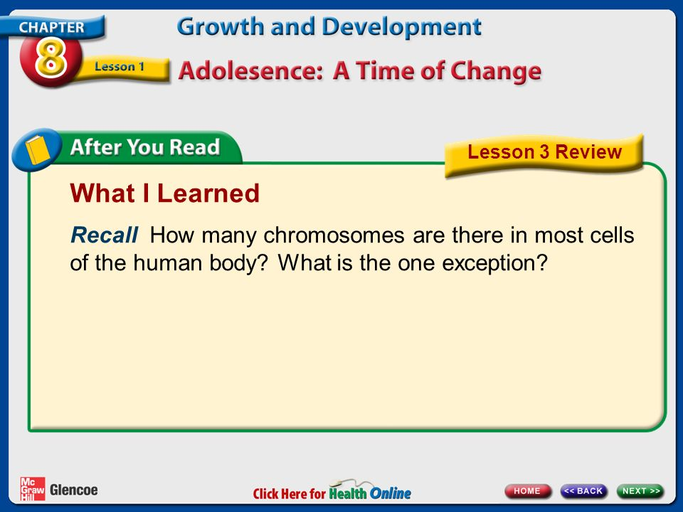 Lesson 3 Review What I Learned. Recall How many chromosomes are there in most cells of the human body What is the one exception