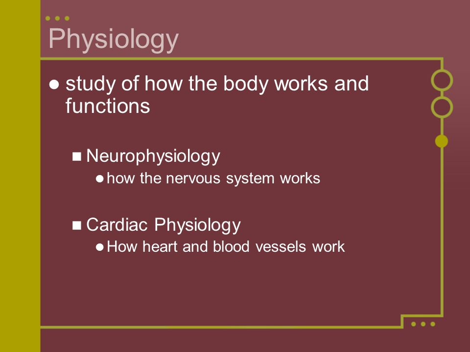Physiology study of how the body works and functions Neurophysiology