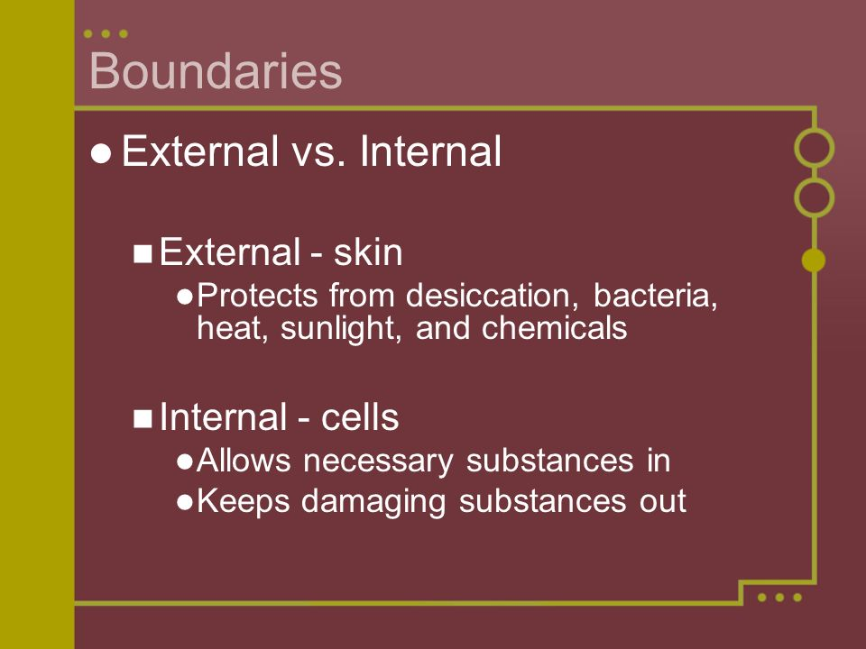 Boundaries External vs. Internal External - skin Internal - cells