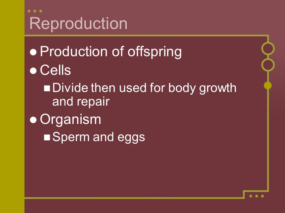 Reproduction Production of offspring Cells Organism
