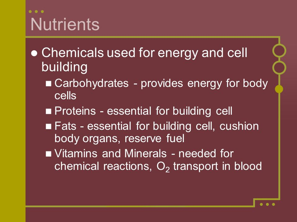 Nutrients Chemicals used for energy and cell building
