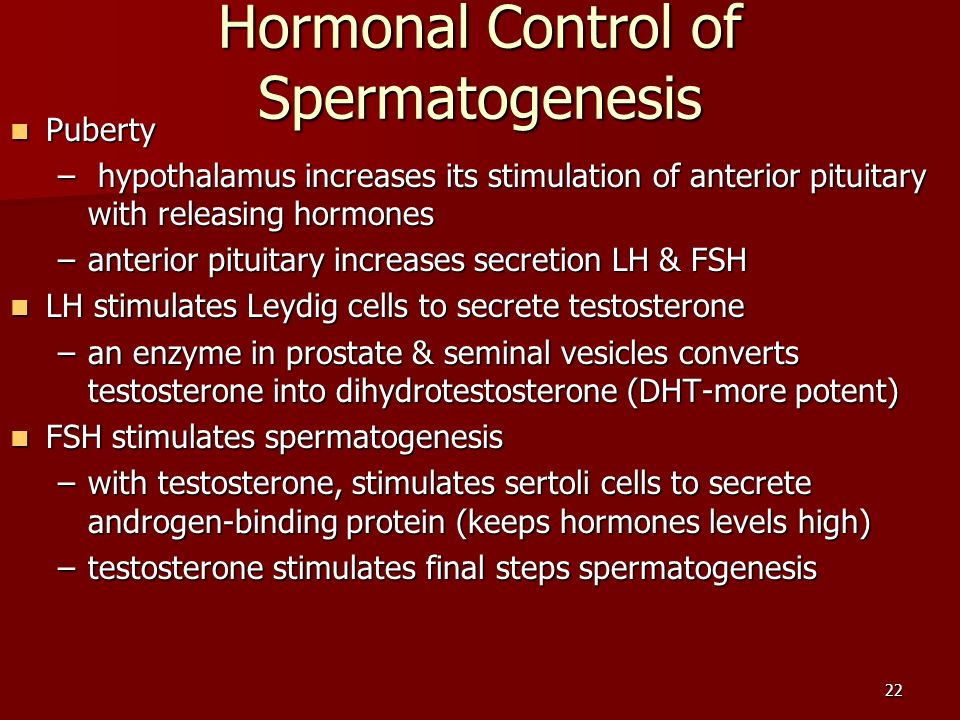hormonal control of spermatogenesis pdf
