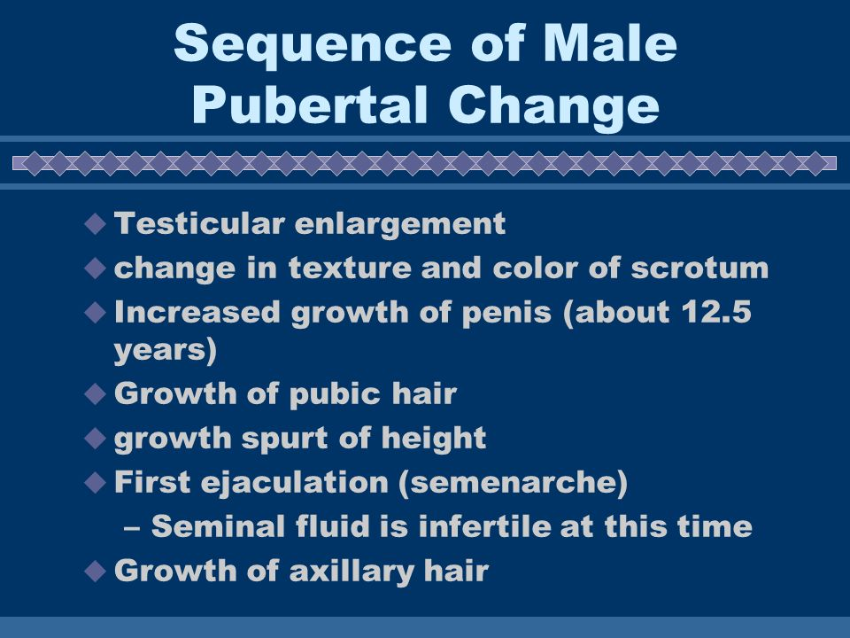 Sequence of Male Pubertal Change