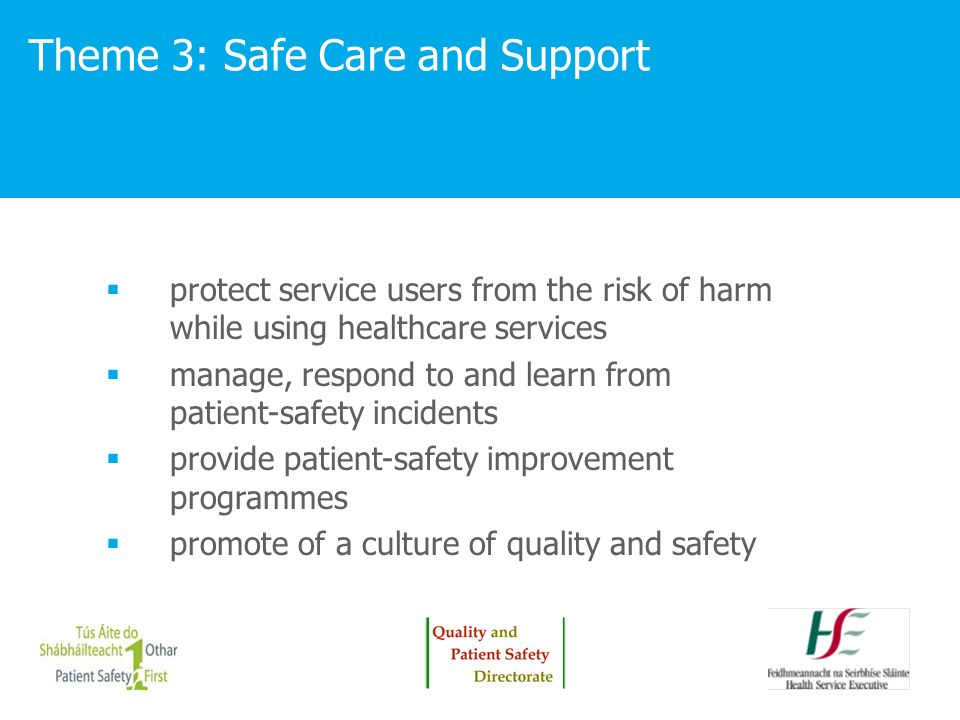 Theme 3: Safe Care and Support