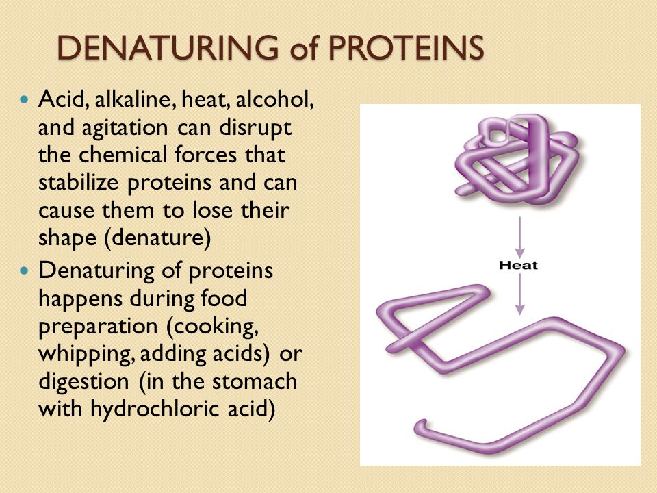 denaturing of proteins The aim of this review is to describe how mechanical extension is thought to  denature proteins, how this process differs to the intrinsic unfolding pathway and, .