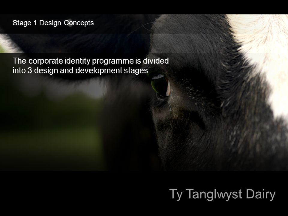 Stage 1 Design Concepts The corporate identity programme is divided into 3 design and development stages.