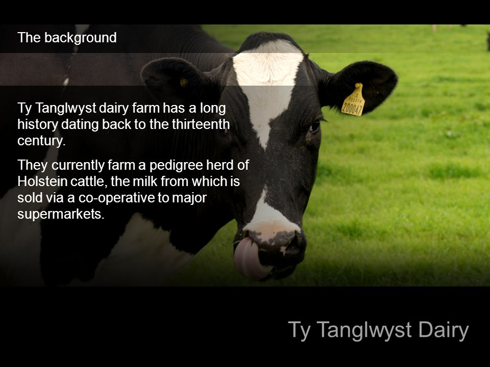 Ty Tanglwyst Dairy The background