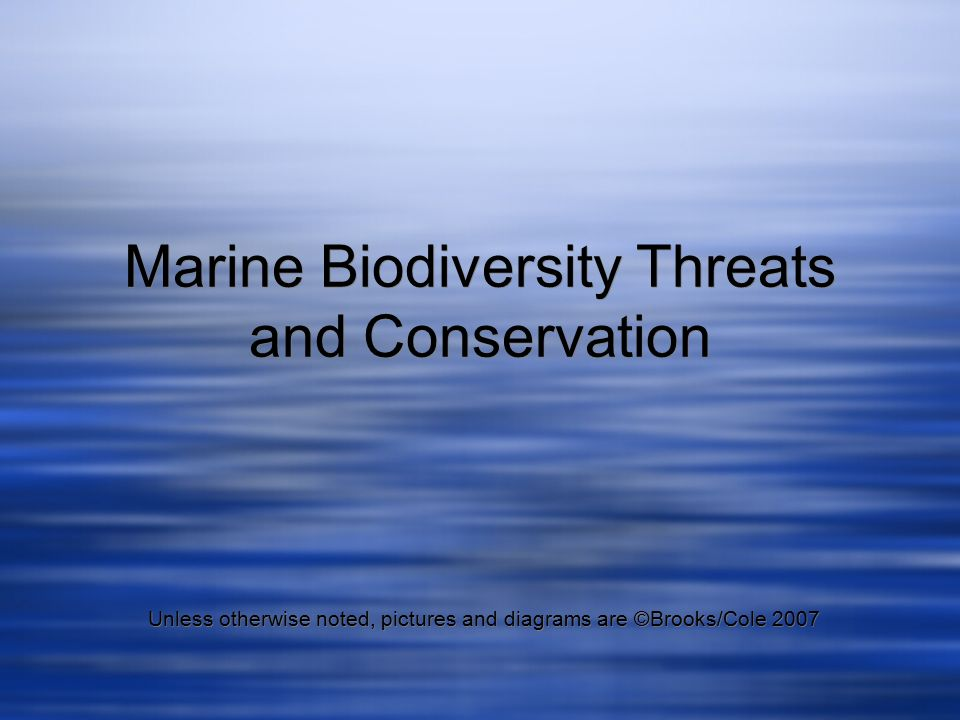 threats to biodiversity and conservation of biodiversity essay Biodiversity: types, importance and conservation methods threats to biodiversity 6 conservation of biodiversity essay on wildlife conservation.