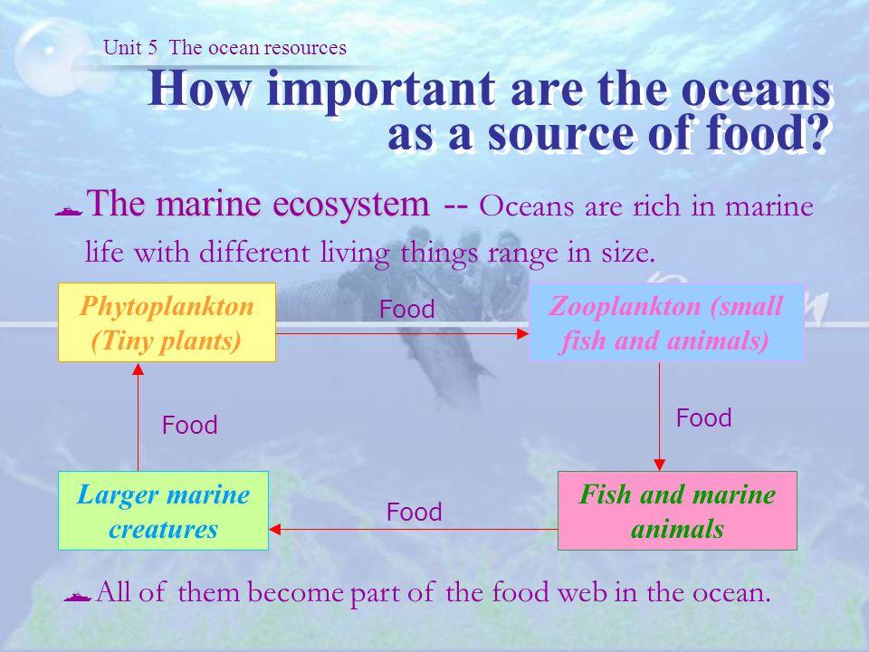 Unit The Ocean Resources Ppt Video Online Download - 5 different oceans