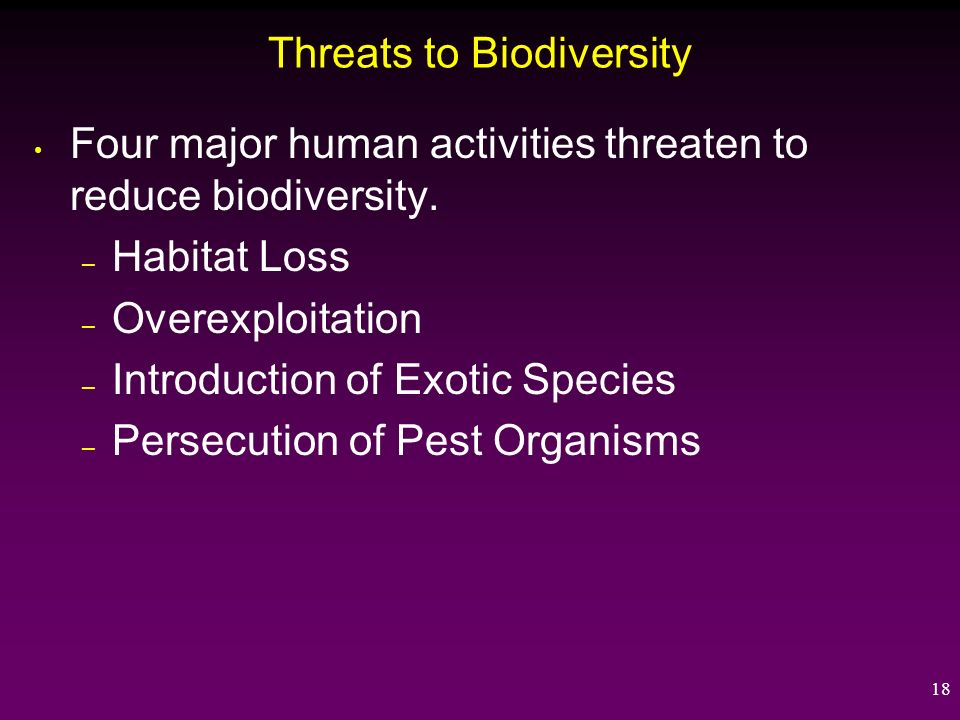 Threats to Biodiversity – What You Can Do To Help