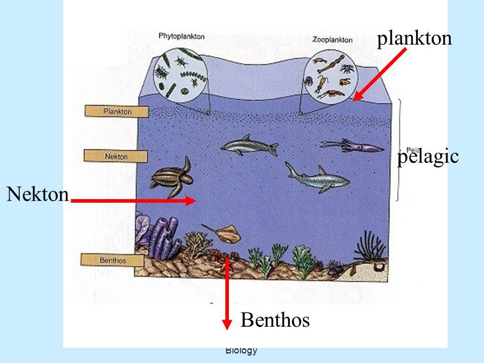Aquatic Ecology Course...