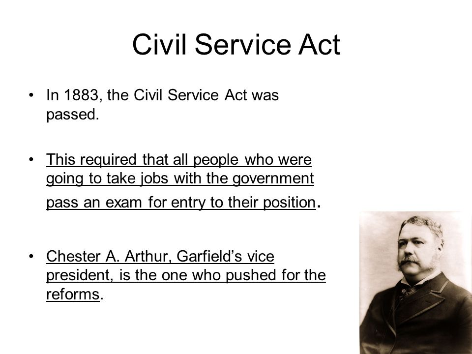 Civil Service Act : Immigration ppt download