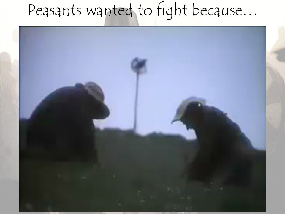 Peasants wanted to fight because…
