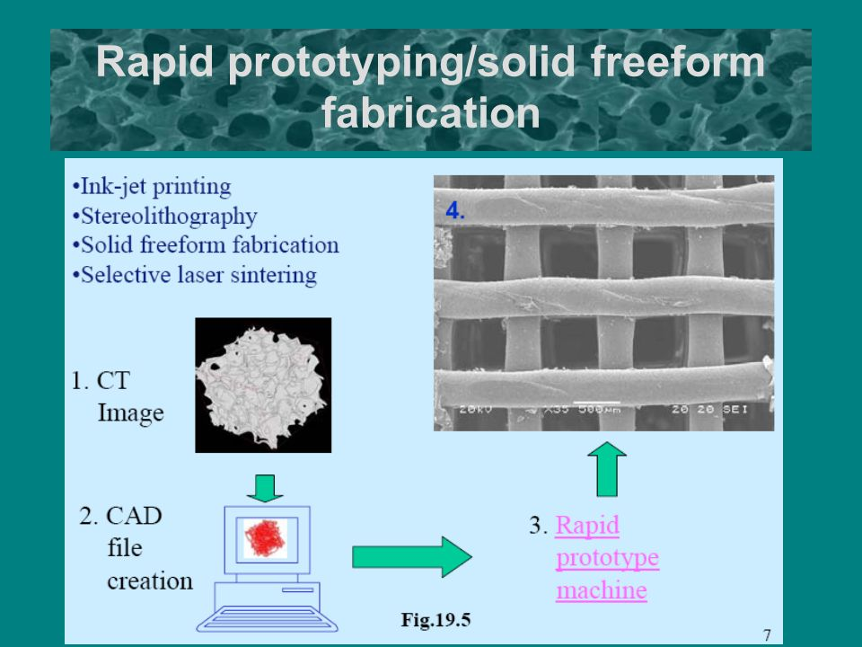 solid freeform fabrication Successive deposition of metals in solid freeform fabrication processes, part 1: thermomechanical models of layers and droplet columns.