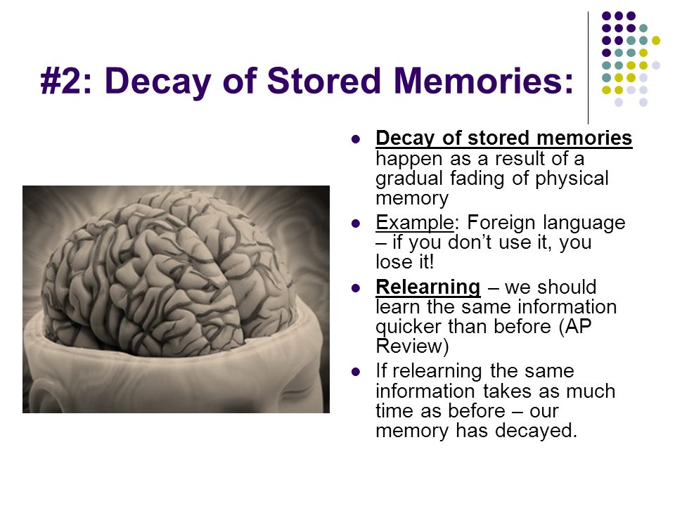 Decay Memory Cognition. - ppt downl...