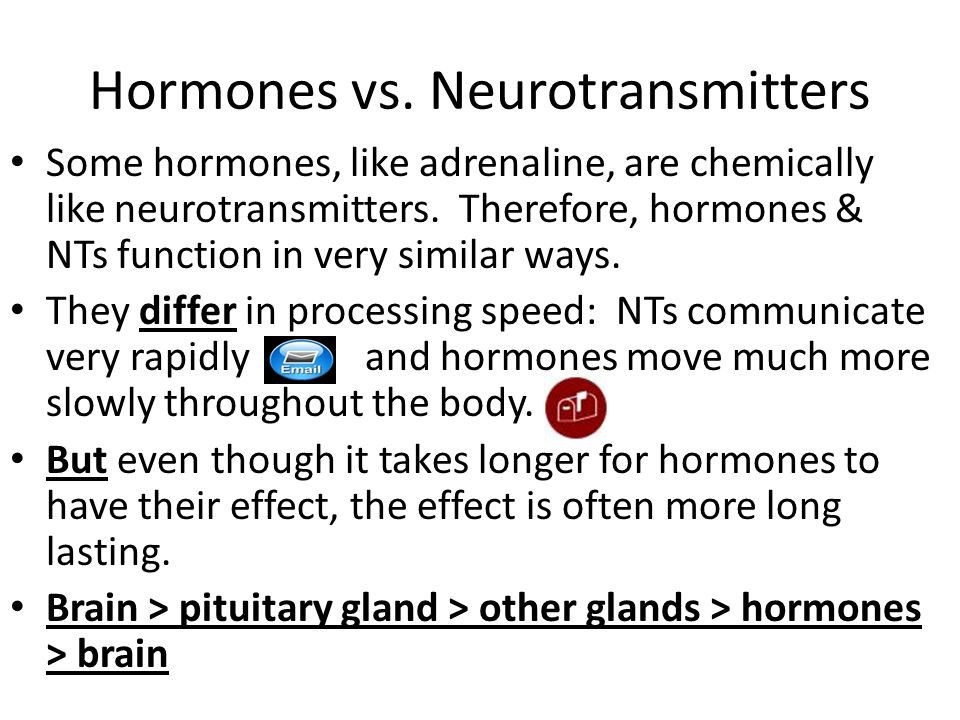 what are the functions of neurotransmitters and hormones Wondering how neurotransmitters work or  neurotransmitters are chemicals that serve very important functions in a  binding of the neurotransmitter to.