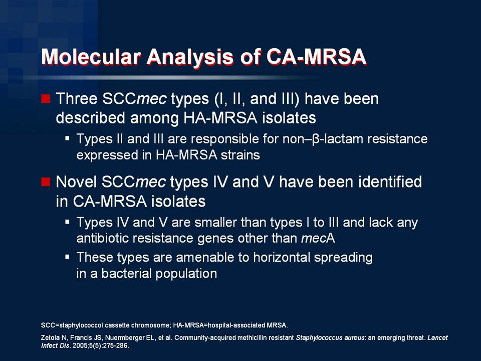 essay or mrsa List and descriptions of research projects happening at the mrsa research center.