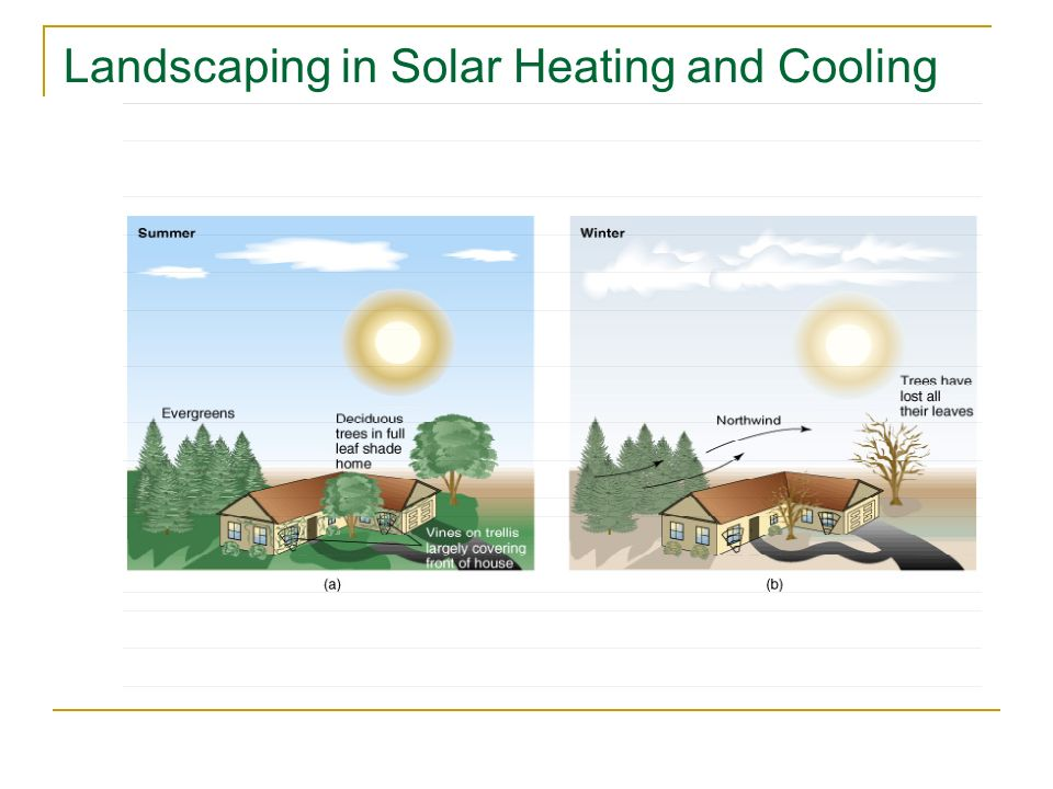 Landscaping in Solar Heating and Cooling