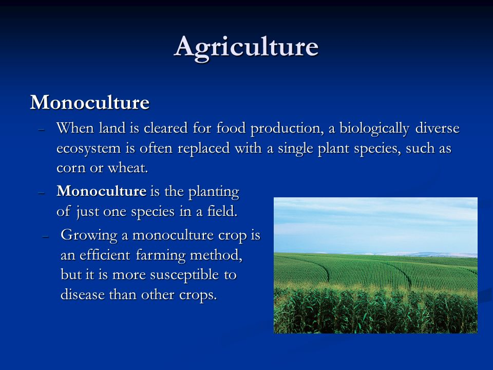 the methods in restoring nutrients in monoculture farms Today, the majority of american farmland is dominated by industrial agriculture—the system of chemically intensive food production developed in the decades after world war ii, featuring enormous single-crop farms and animal production facilities.