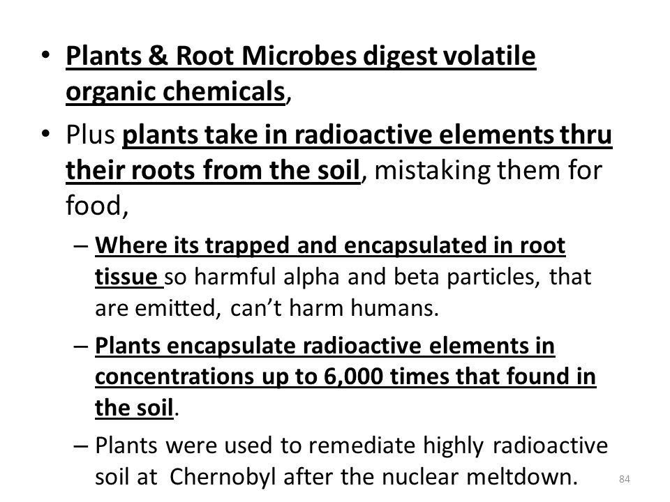 Plants & Root Microbes digest volatile organic chemicals,