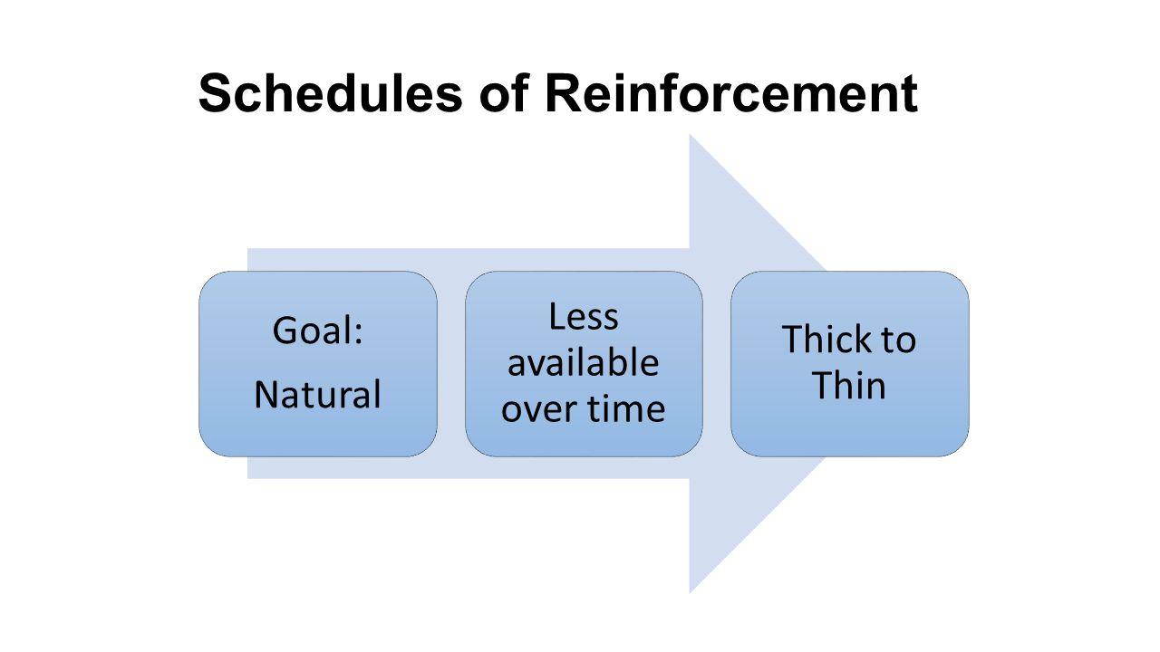 Reinforcement Schedules Worksheet – careless.me