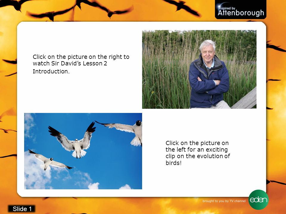 Click on the picture on the right to watch Sir David's Lesson 2 Introduction.