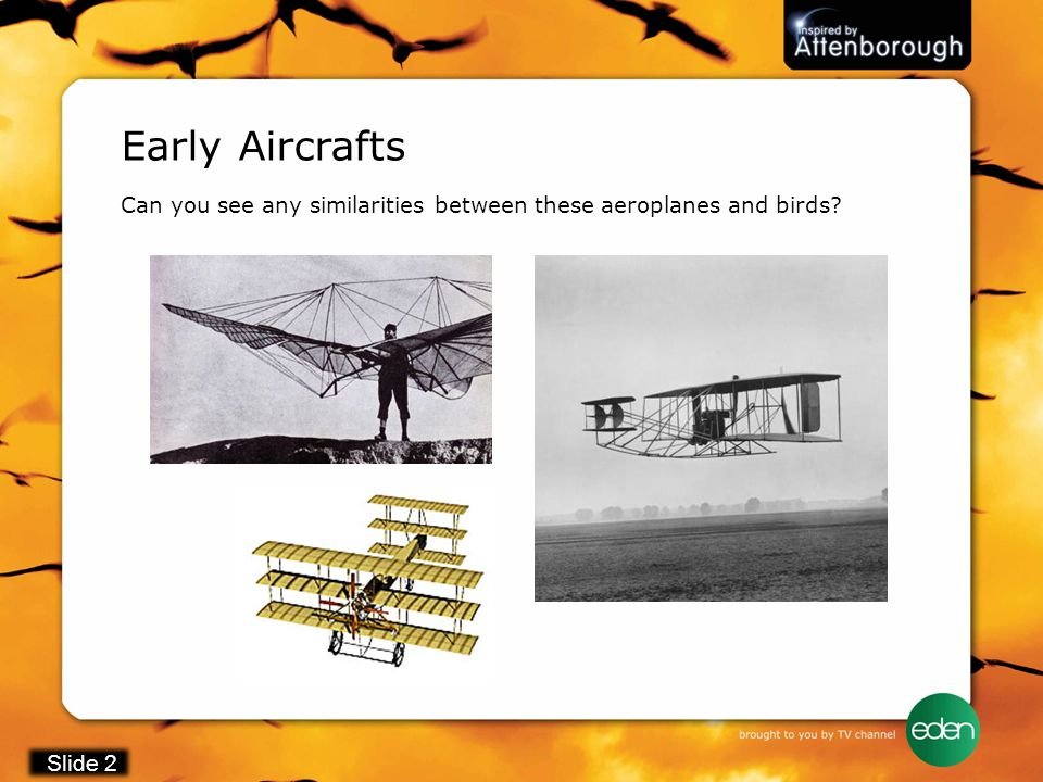 Early Aircrafts Can you see any similarities between these aeroplanes and birds Slide 2